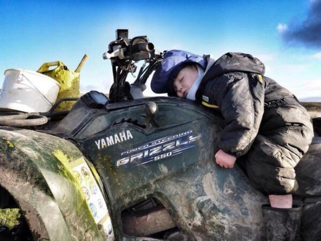 A hard day's work!