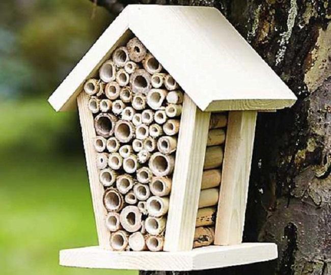 Bee house, £11, at www.thegreatgiftcompany.co.uk.