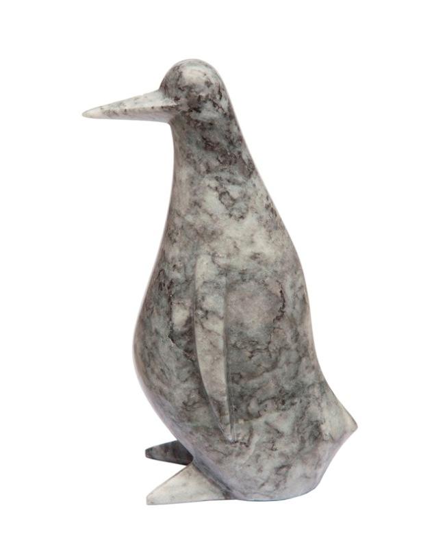 Dark penguin