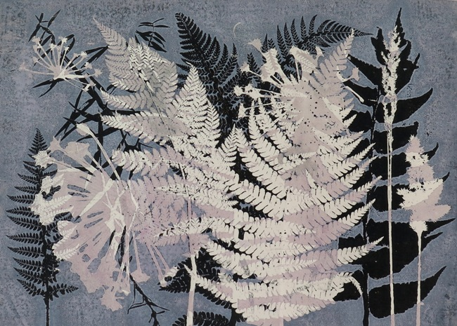 Spring Ferns by Stef Mitchell